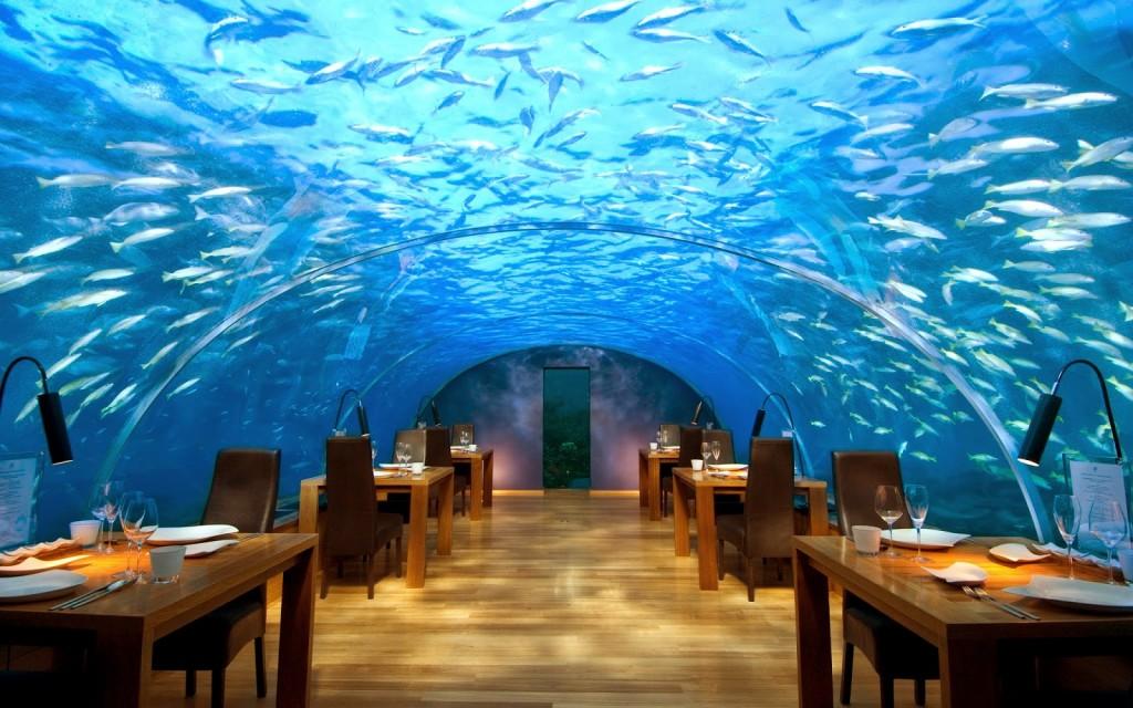 Самые необычные рестораны под водой