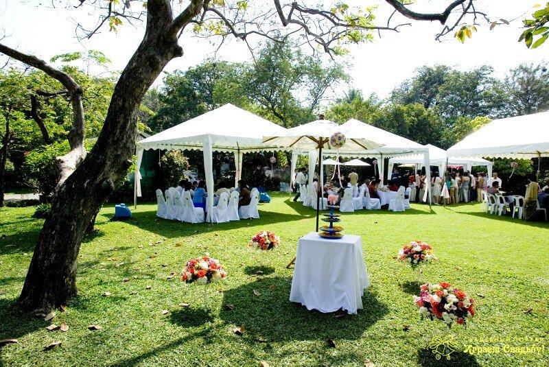 Плюсы и минусы свадебного банкета на открытом воздухе1